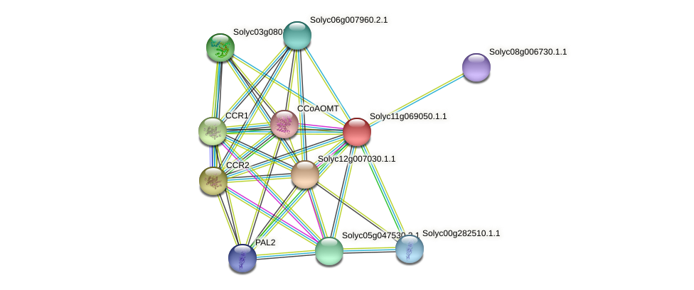 Solyc11g069050.1.1 protein (Solanum lycopersicum) - STRING interaction network