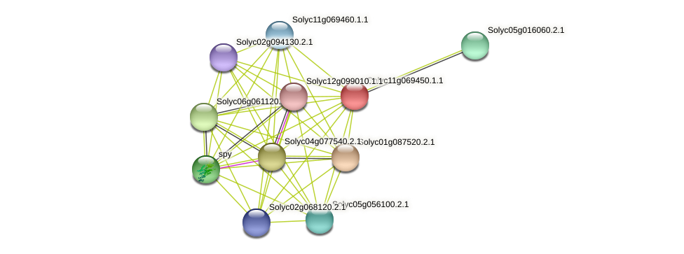 101259309 protein (Solanum lycopersicum) - STRING interaction network