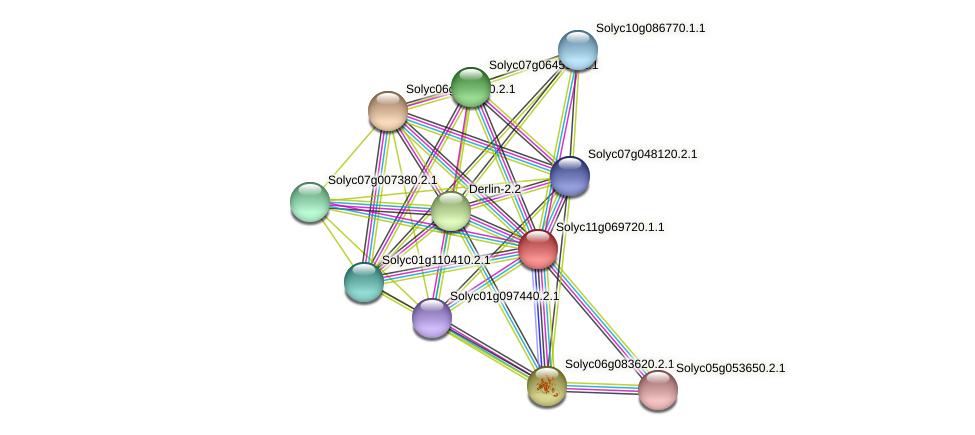 Solyc11g069720.1.1 protein (Solanum lycopersicum) - STRING interaction network