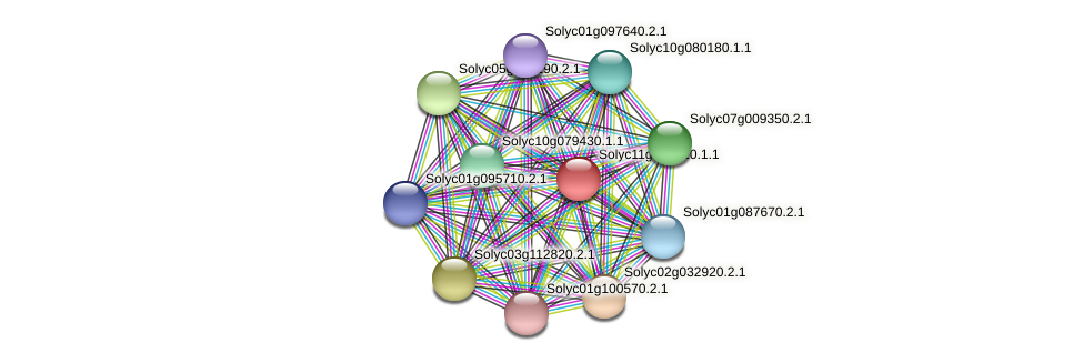 Solyc11g072320.1.1 protein (Solanum lycopersicum) - STRING interaction network