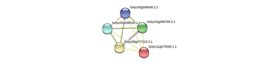 Solyc11g073090.1.1 protein (Solanum lycopersicum) - STRING interaction network
