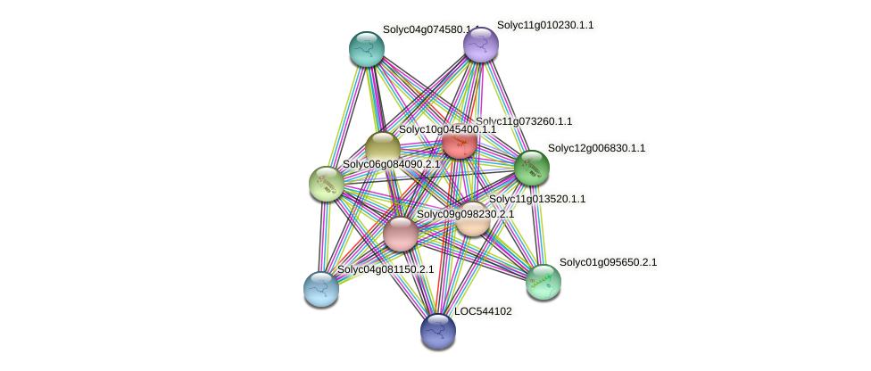 Solyc11g073260.1.1 protein (Solanum lycopersicum) - STRING interaction network