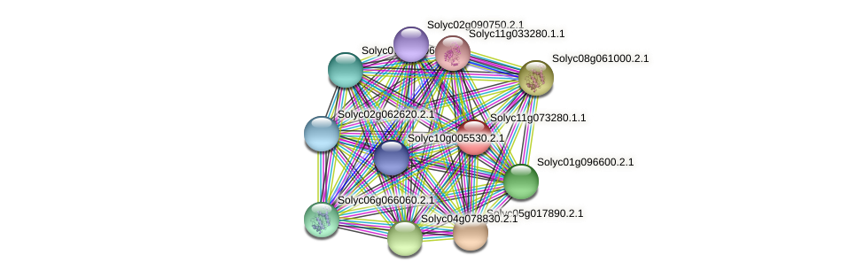 101266904 protein (Solanum lycopersicum) - STRING interaction network