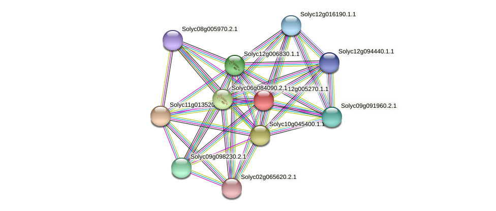 Solyc12g005270.1.1 protein (Solanum lycopersicum) - STRING interaction network