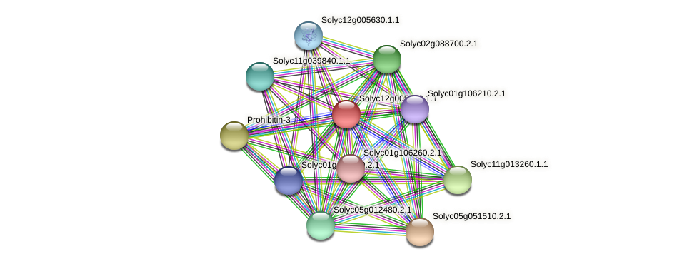 Solyc12g005500.1.1 protein (Solanum lycopersicum) - STRING interaction network