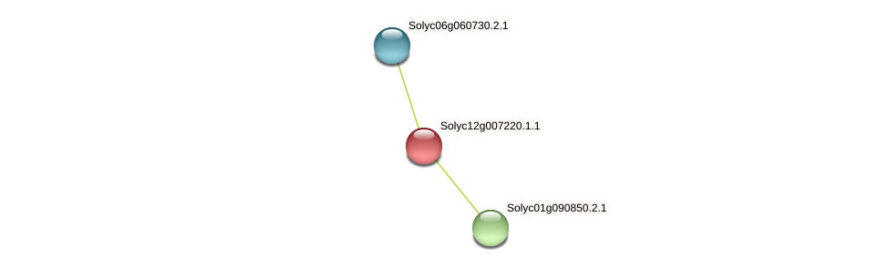 Solyc12g007220.1.1 protein (Solanum lycopersicum) - STRING interaction network