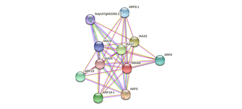 Solyc12g007230.1.1 protein (Solanum lycopersicum) - STRING interaction network