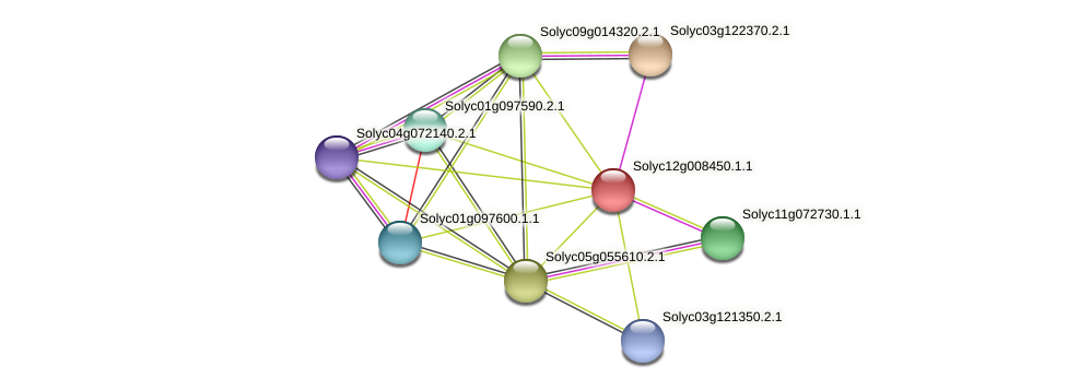 Solyc12g008450.1.1 protein (Solanum lycopersicum) - STRING interaction network