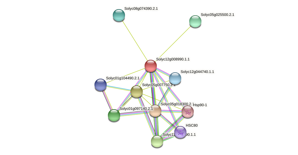 Solyc12g008990.1.1 protein (Solanum lycopersicum) - STRING interaction network