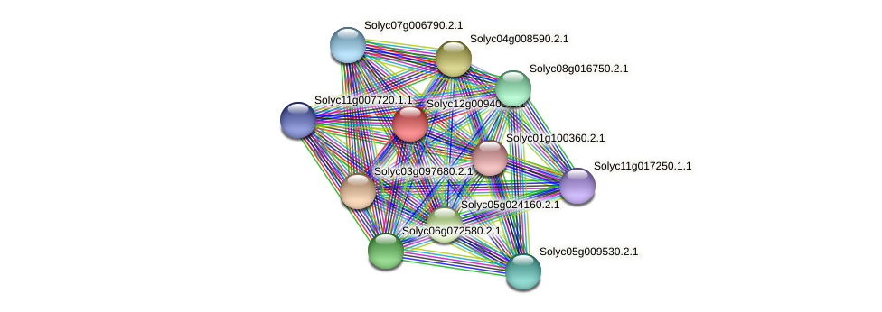 Solyc12g009400.1.1 protein (Solanum lycopersicum) - STRING interaction network