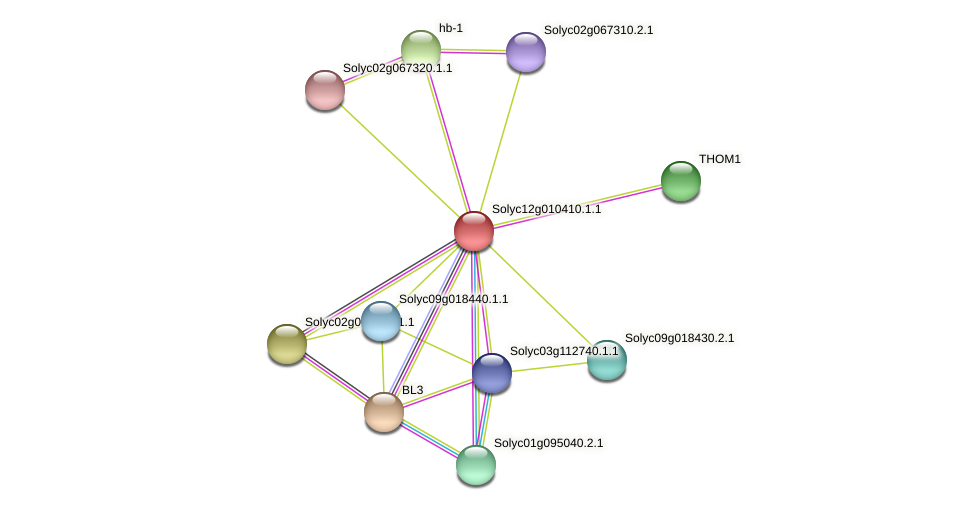 101249149 protein (Solanum lycopersicum) - STRING interaction network