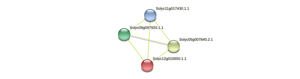 Solyc12g010650.1.1 protein (Solanum lycopersicum) - STRING interaction network