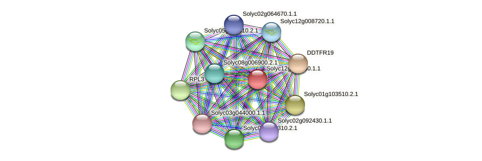 Solyc12g010930.1.1 protein (Solanum lycopersicum) - STRING interaction network