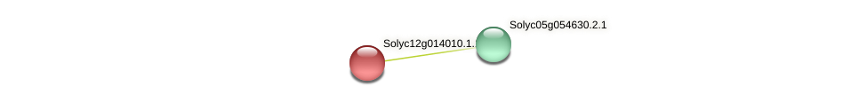 Solyc12g014010.1.1 protein (Solanum lycopersicum) - STRING interaction network