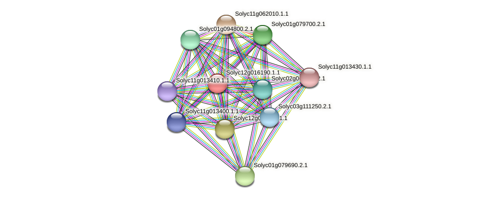 Solyc12g016190.1.1 protein (Solanum lycopersicum) - STRING interaction network