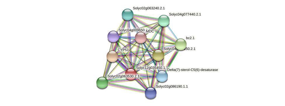 Solyc12g035450.1.1 protein (Solanum lycopersicum) - STRING interaction network