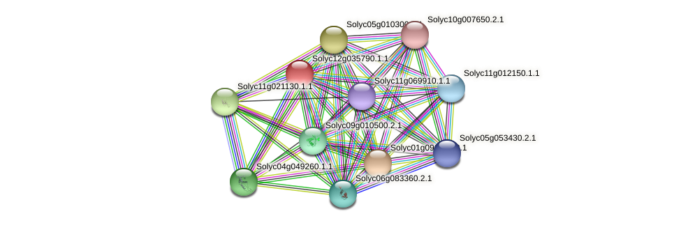 Solyc12g035790.1.1 protein (Solanum lycopersicum) - STRING interaction network