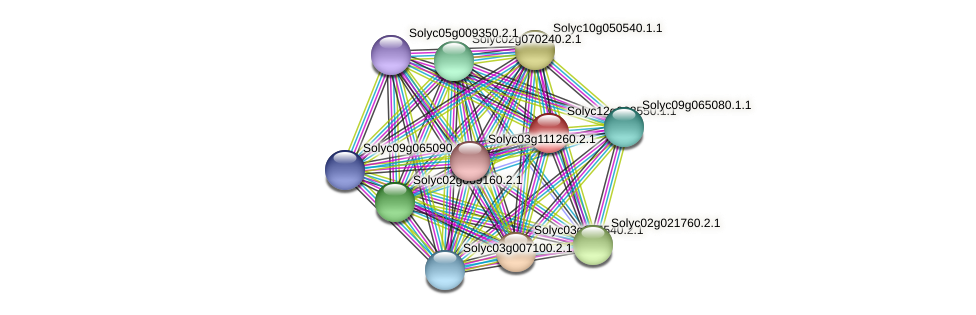 Solyc12g038550.1.1 protein (Solanum lycopersicum) - STRING interaction network