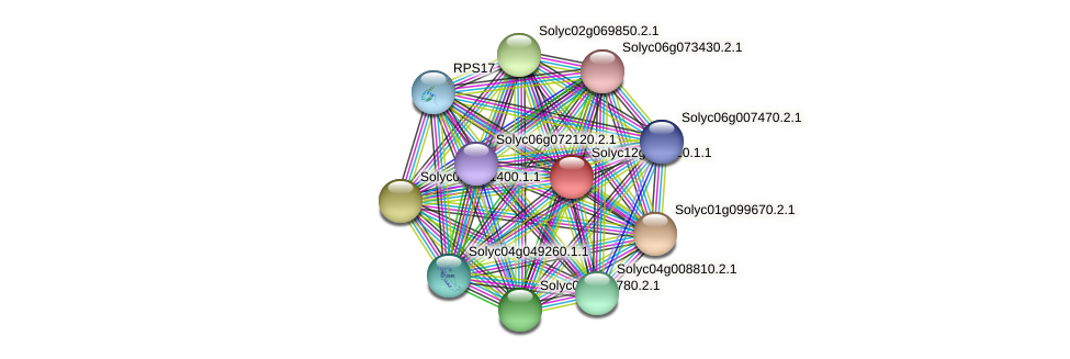 101268656 protein (Solanum lycopersicum) - STRING interaction network