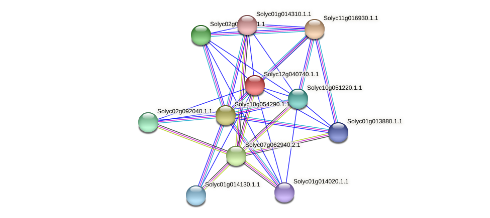 Solyc12g040740.1.1 protein (Solanum lycopersicum) - STRING interaction network