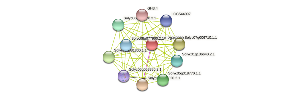 Solyc12g042980.1.1 protein (Solanum lycopersicum) - STRING interaction network
