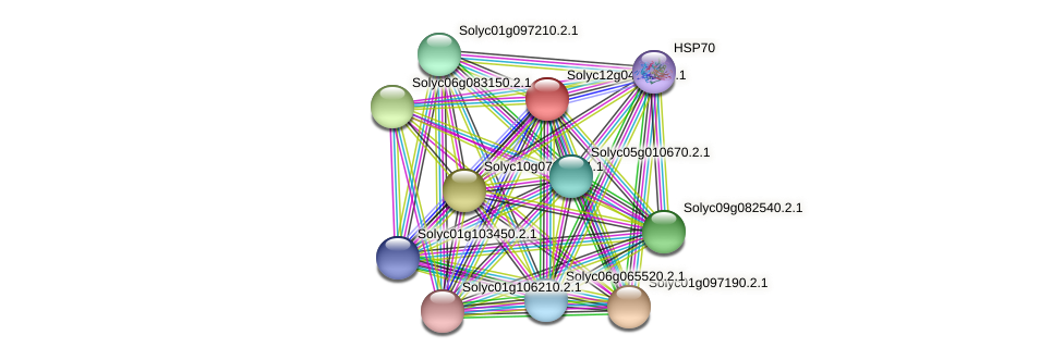 101265903 protein (Solanum lycopersicum) - STRING interaction network
