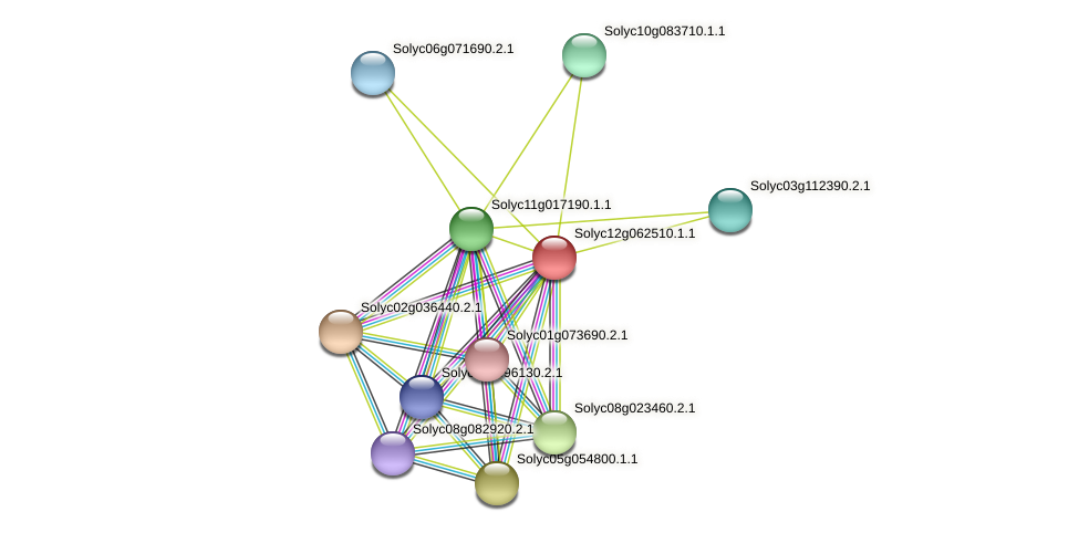 Solyc12g062510.1.1 protein (Solanum lycopersicum) - STRING interaction network