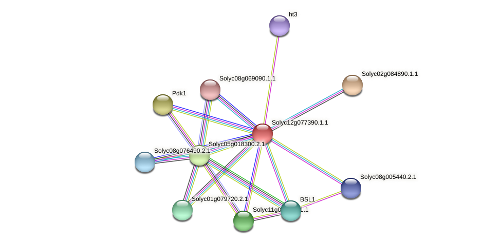 101265713 protein (Solanum lycopersicum) - STRING interaction network