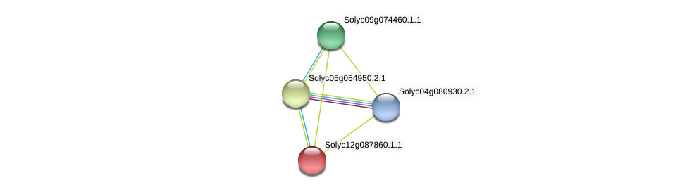 Solyc12g087860.1.1 protein (Solanum lycopersicum) - STRING interaction network