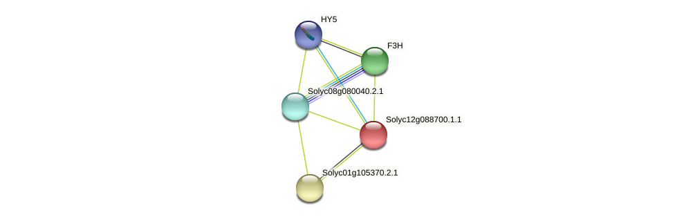 Solyc12g088700.1.1 protein (Solanum lycopersicum) - STRING interaction network