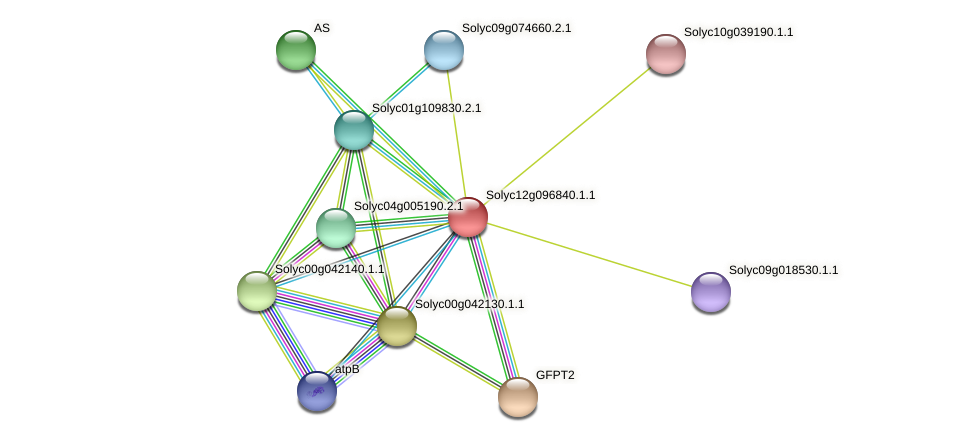 Solyc12g096840.1.1 protein (Solanum lycopersicum) - STRING interaction network