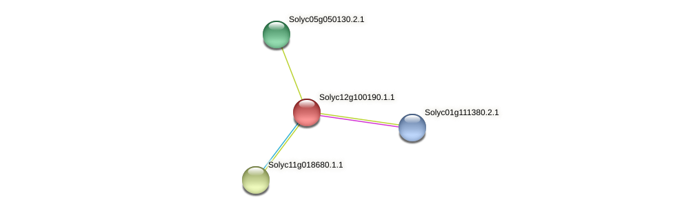 Solyc12g100190.1.1 protein (Solanum lycopersicum) - STRING interaction network