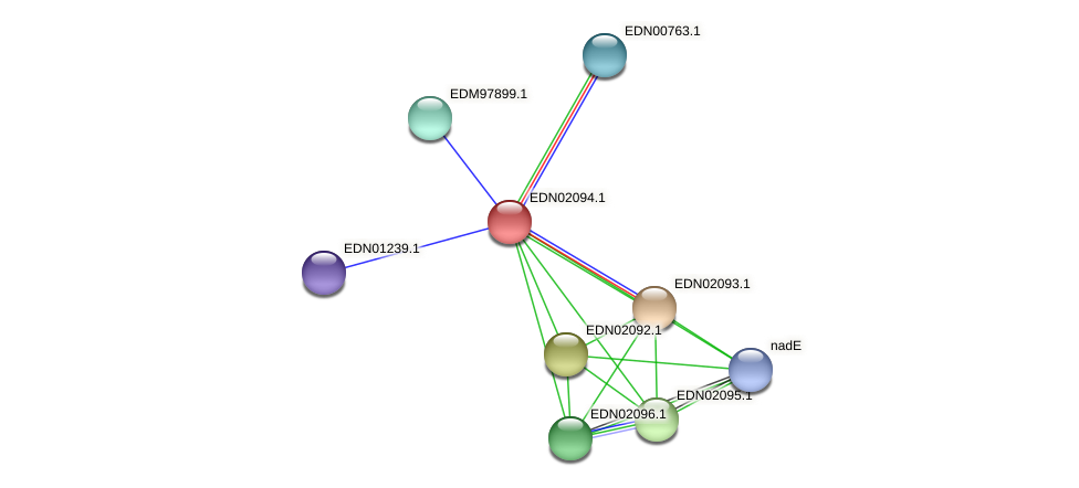 BACCAP_00128 protein (Pseudoflavonifractor capillosus) - STRING interaction network