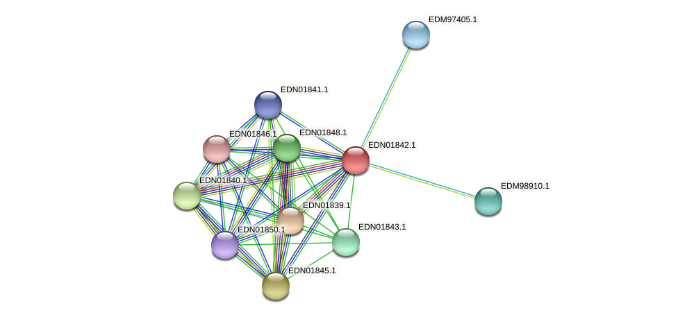 BACCAP_00183 protein (Pseudoflavonifractor capillosus) - STRING interaction network