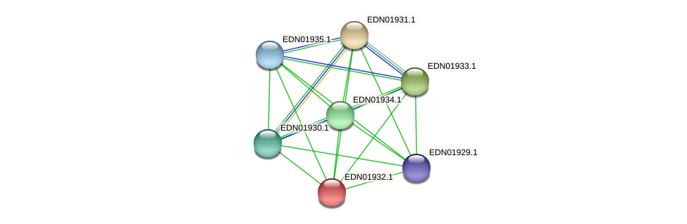 BACCAP_00276 protein (Pseudoflavonifractor capillosus) - STRING interaction network