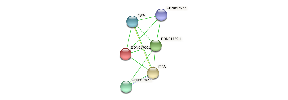 BACCAP_00425 protein (Pseudoflavonifractor capillosus) - STRING interaction network