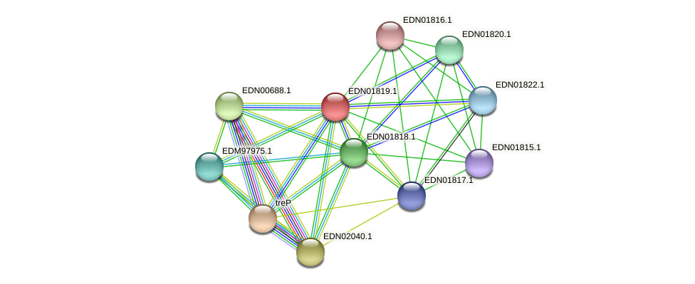 BACCAP_00485 protein (Pseudoflavonifractor capillosus) - STRING interaction network