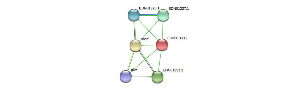 BACCAP_00898 protein (Pseudoflavonifractor capillosus) - STRING interaction network