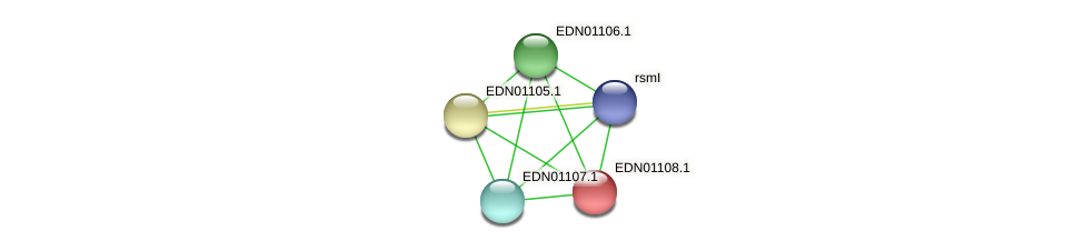 EDN01108.1 protein (Pseudoflavonifractor capillosus) - STRING interaction network