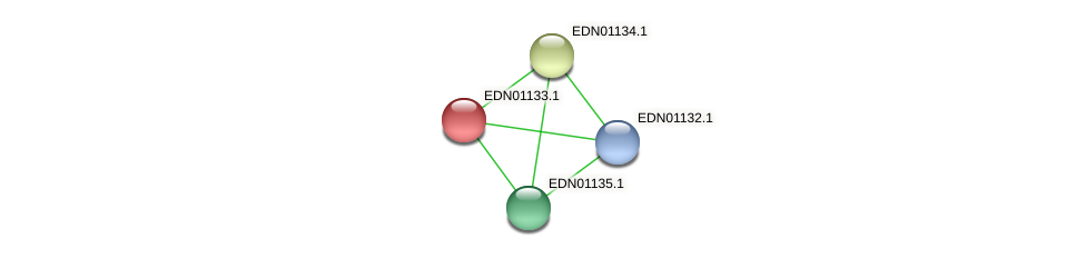 BACCAP_01074 protein (Pseudoflavonifractor capillosus) - STRING interaction network