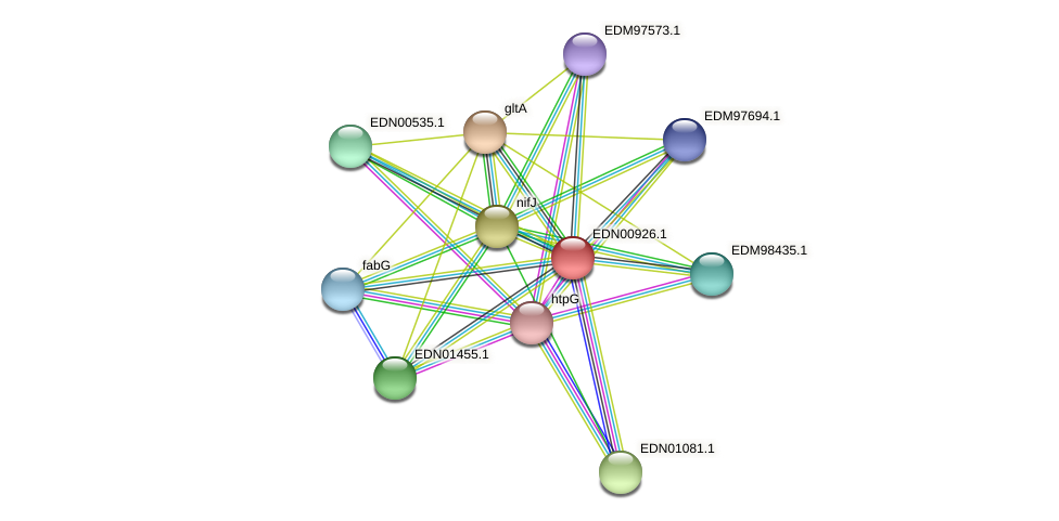 BACCAP_01278 protein (Pseudoflavonifractor capillosus) - STRING interaction network