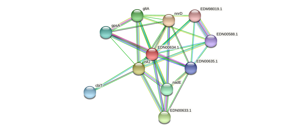 BACCAP_01400 protein (Pseudoflavonifractor capillosus) - STRING interaction network
