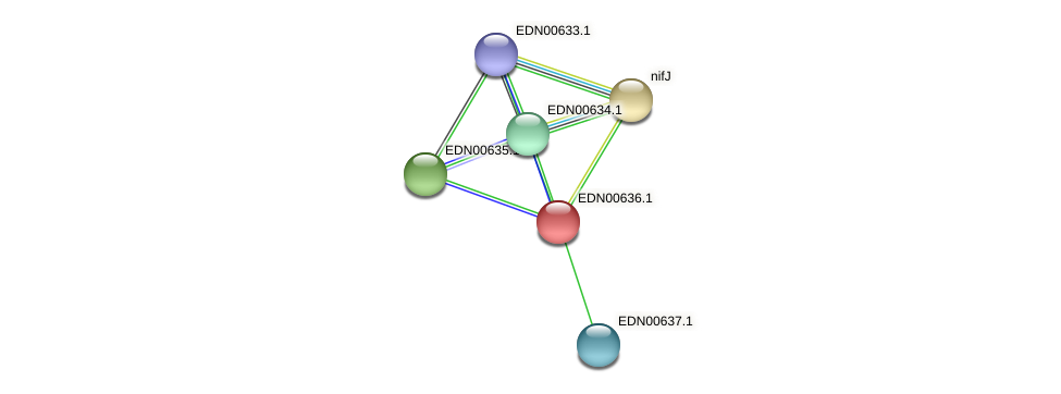 BACCAP_01402 protein (Pseudoflavonifractor capillosus) - STRING interaction network