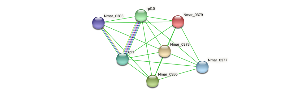 Nmar_0379 protein (Nitrosopumilus maritimus) - STRING interaction network