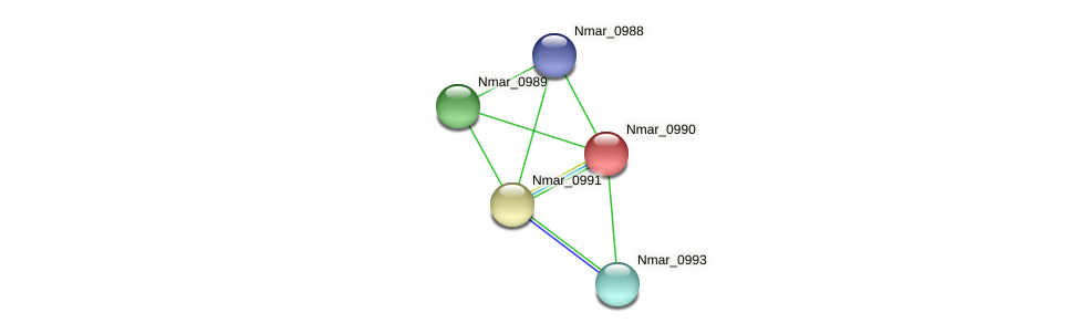 Nmar_0990 protein (Nitrosopumilus maritimus) - STRING interaction network