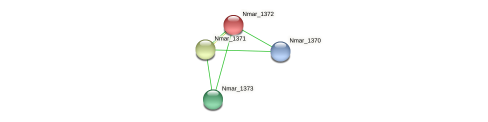 Nmar_1372 protein (Nitrosopumilus maritimus) - STRING interaction network