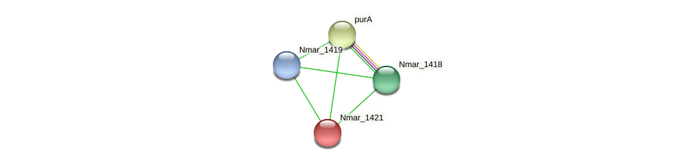 Nmar_1421 protein (Nitrosopumilus maritimus) - STRING interaction network