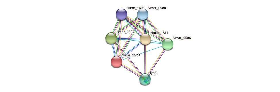 Nmar_1523 protein (Nitrosopumilus maritimus) - STRING interaction network