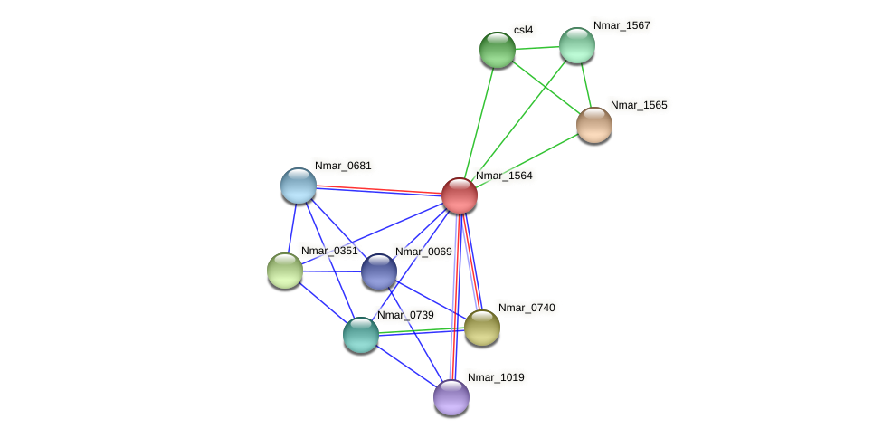 Nmar_1564 protein (Nitrosopumilus maritimus) - STRING interaction network