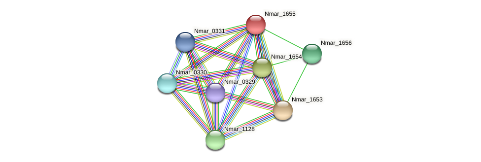 Nmar_1655 protein (Nitrosopumilus maritimus) - STRING interaction network